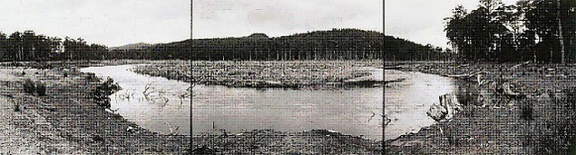 David Stephenson, Lake King William a Derwent River hydro electric development, Tasmania, 1982, three gelatin-silver photographs. Image courtesy of Art Gallery of New South Wales.