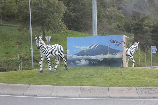 Zebra Roundabout, on the way to Furka Pass. Photo by Sara Frantz.