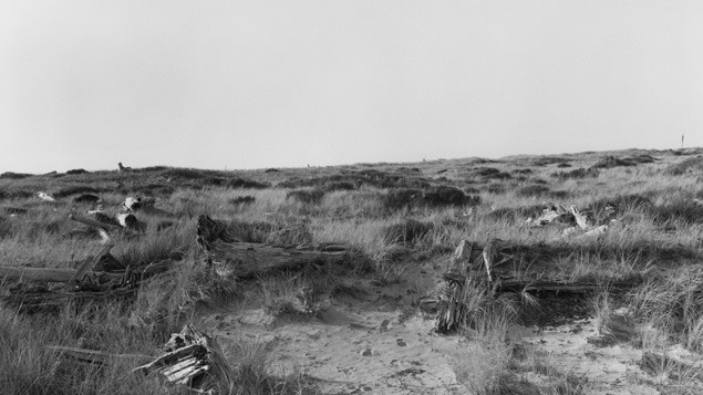 Scott Hinton on Robert Adams's American Landscapes