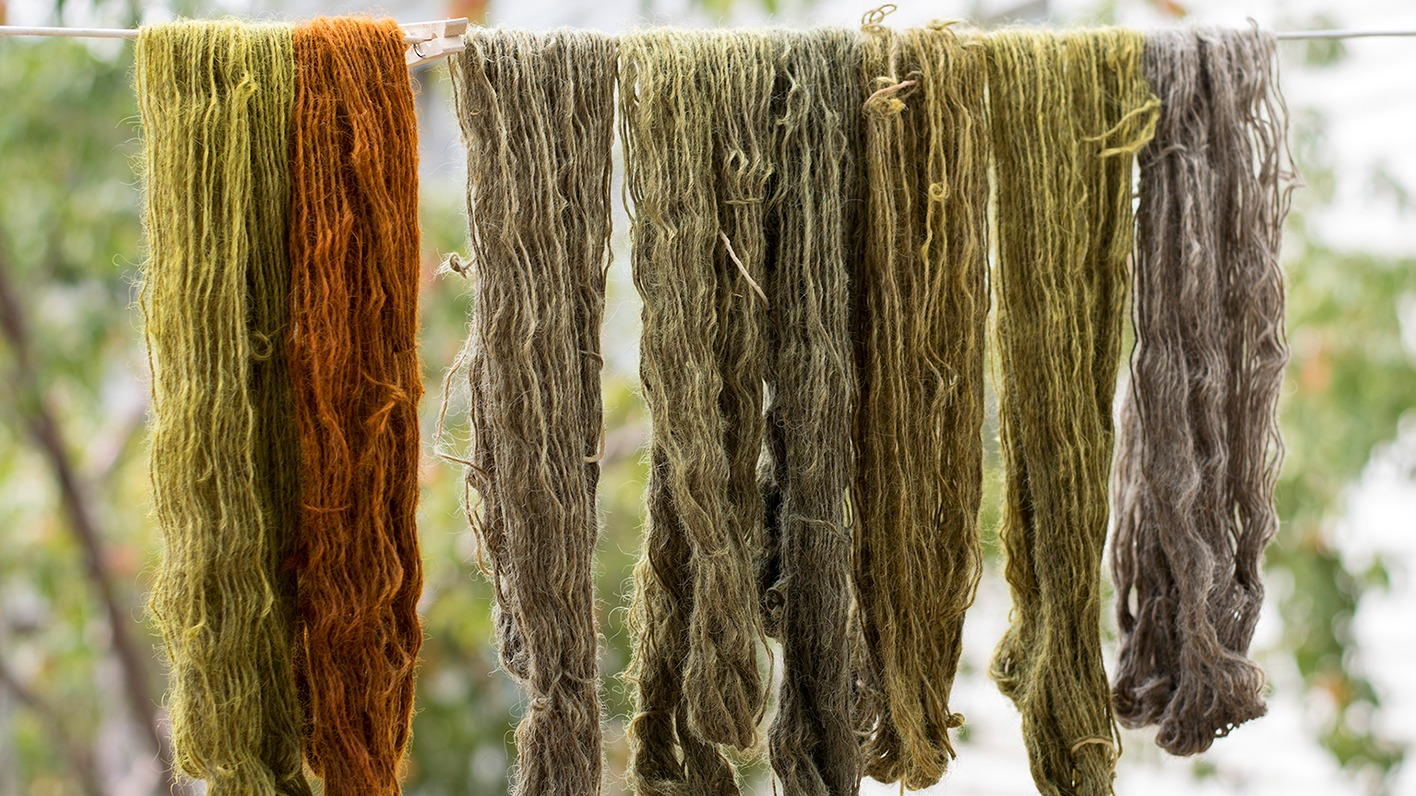 Artist Sarah Lillegard on Natural Dyes and Craft Culture