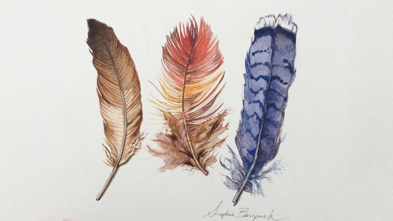 Natural Illustration: Feathers in Watercolor
