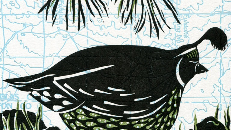 Introduction to Linocut Printing: Birds